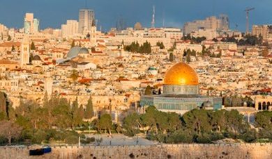 elite - עלית VIP - הסעות בישראל